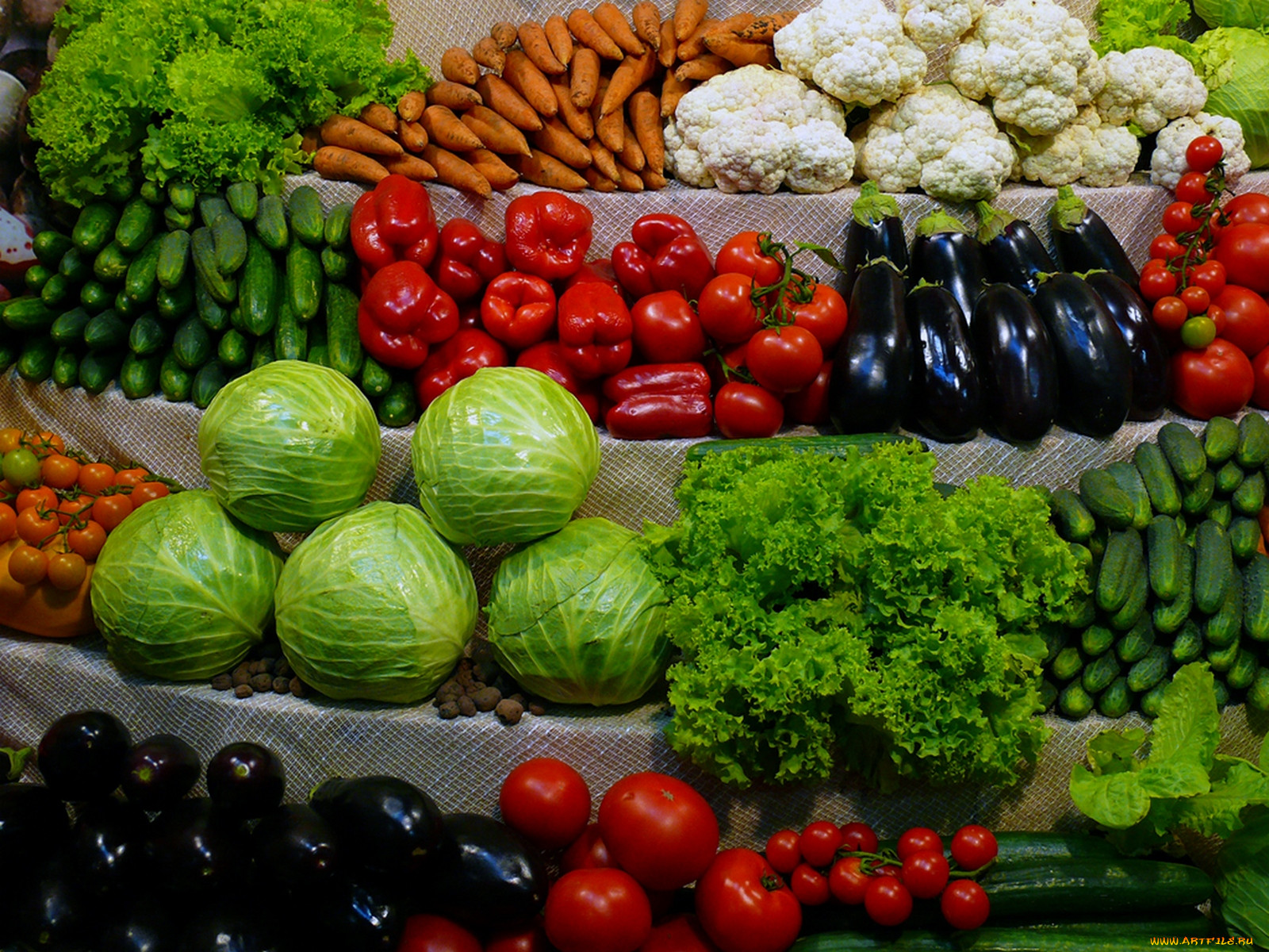 Выращивание фруктов в америке 31
